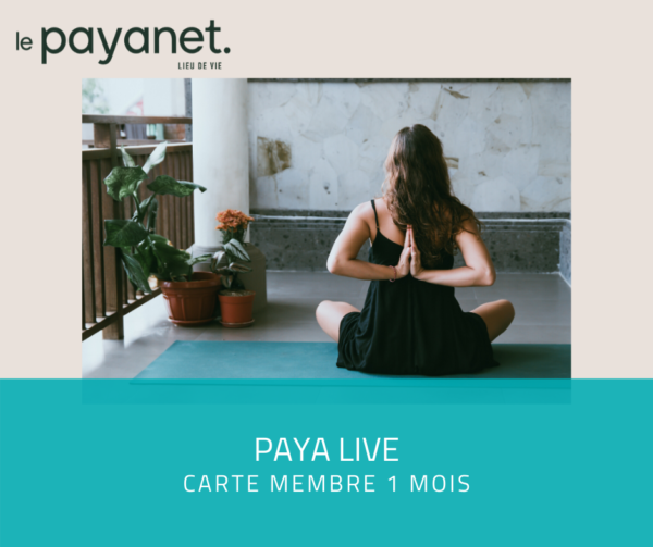 paya live